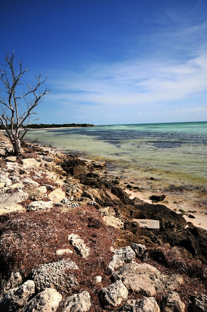 Bahia Honda Photo gratuit
