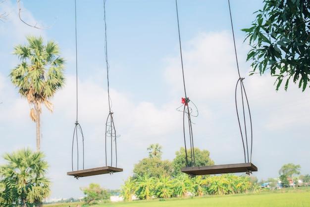 Balancer sur un arbre dans la campagne. Photo Premium