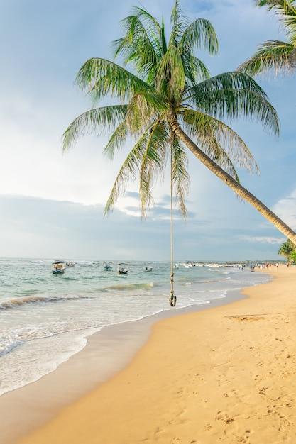 Balançoire Ou Bungee Suspendu à Un Palmier Sur La Plage Dans Le Contexte De L'océan Et Des Bateaux Au Coucher Du Soleil, Sri Lanka Photo Premium