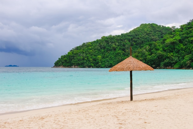 Bali Caïman Vietnam Seychelles Baie Photo gratuit
