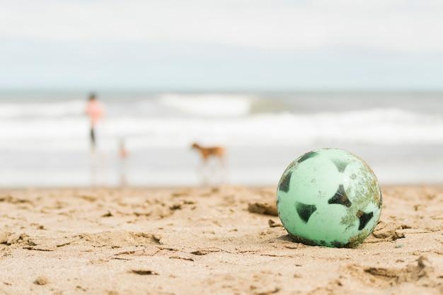 Balle sur la côte de sable et personne avec chien près de l'eau Photo gratuit