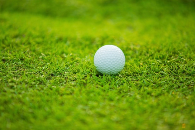 Balle de golf sur le green Photo Premium