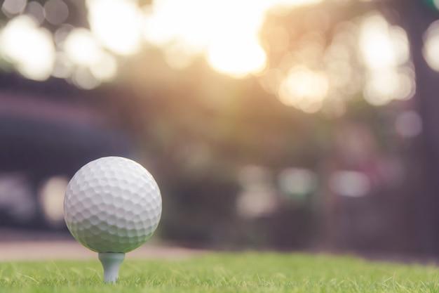 Balle de golf sur l'herbe verte prête à jouer au terrain de golf. avec fond Photo Premium