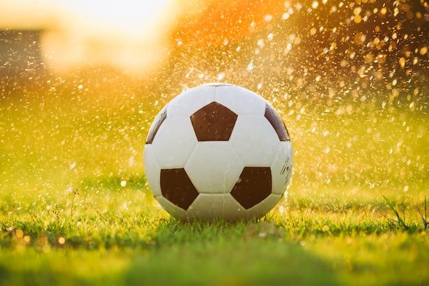 Balle sur le terrain en herbe verte pour match de football sous le soleil couchant et la pluie. Photo Premium