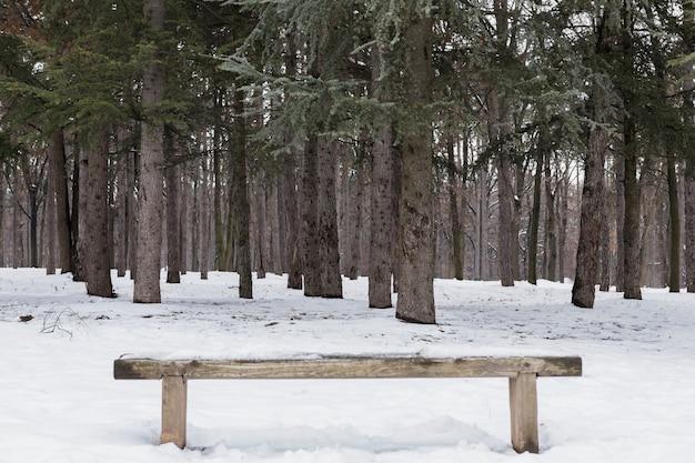 Banc De Bois Vide Recouvert De Neige En Forêt D'hiver Photo gratuit