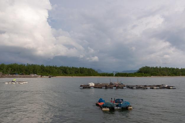 Bang phat Photo Premium