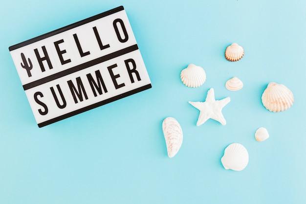 Bannière avec texte d'été et coquillages sur fond clair Photo gratuit