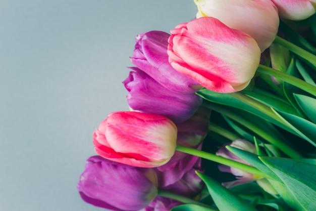 Beau bouquet de fleurs de tulipes pourpres roses colorées fraîches Photo Premium