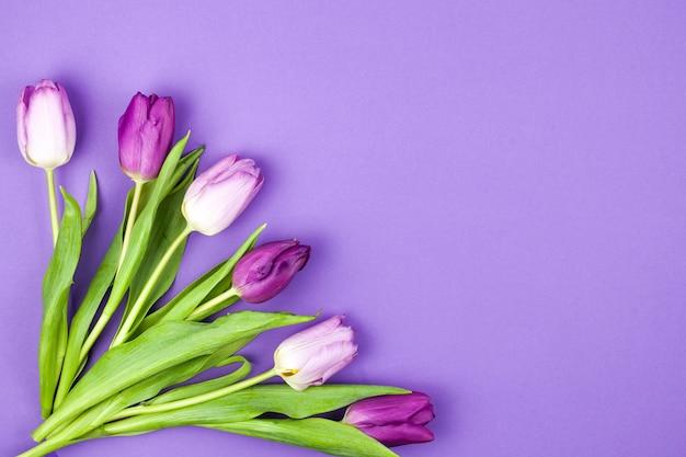 Beau bouquet de fleurs de tulipes sur une surface violette Photo gratuit