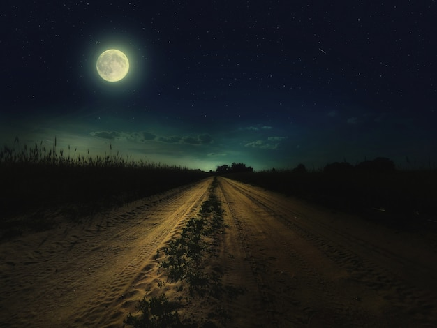 Beau ciel nocturne magique avec la pleine lune et les étoiles et la route reculant au loin avec l'herbe verte Photo Premium