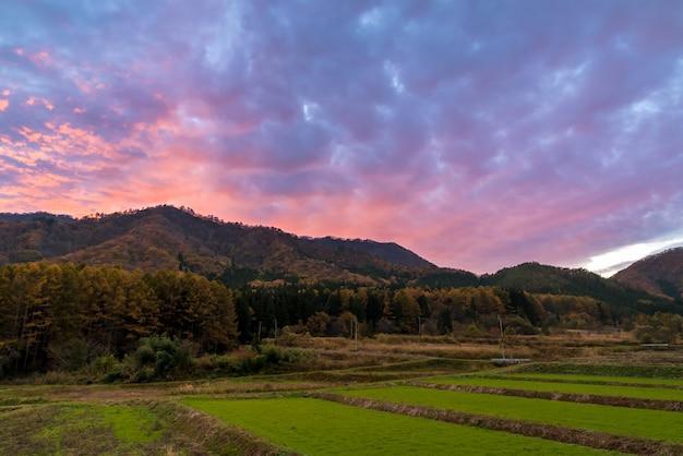 Beau coucher de soleil Photo Premium