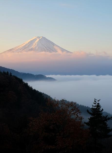 Beau coup du mont fuji avec une mer de brouillard au premier plan Photo Premium