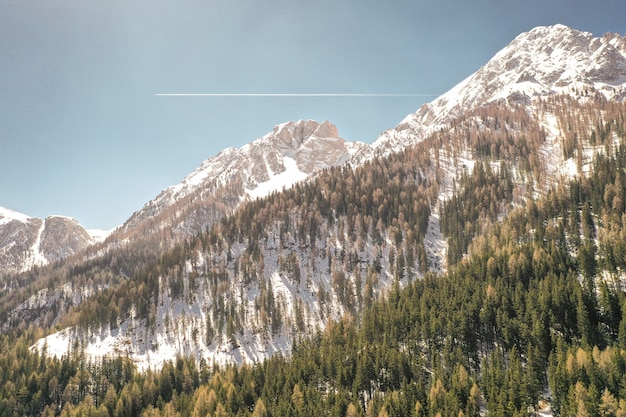Beau Coup De Montagnes Enneigées Et D'arbres Sur Une Colline Photo gratuit