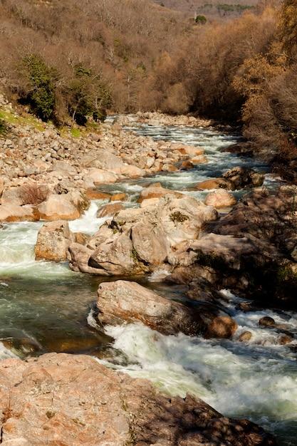Beau cours d'une rivière en bas Photo Premium
