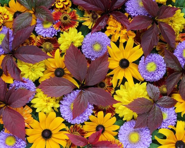 Beau fond d'automne pour les félicitations et les cartes postales. Photo Premium