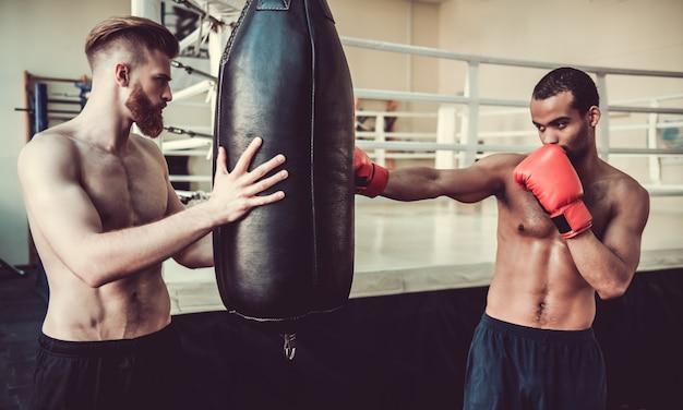 Beau jeunes boxeurs pratiquent avec un sac de boxe. Photo Premium