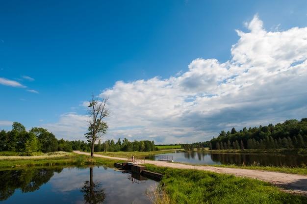 Beau Lac Encore Avec Des Arbres à L'horizon Et Des Nuages Gonflés Blancs Dans Le Ciel. Journée D'été Paisible Au Chalet. Grands Arbres Verts Sur Un Lac Photo Premium