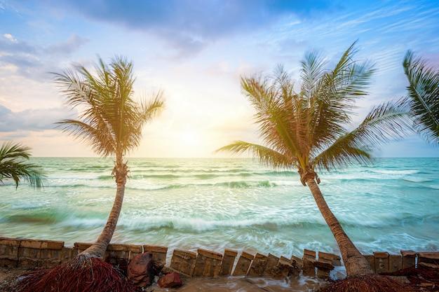 Beau lever de soleil tôt le matin sur un cocotier avec la mer à l'horizon sur la plage de hat chao lao à chanthaburi en thaïlande. Photo Premium