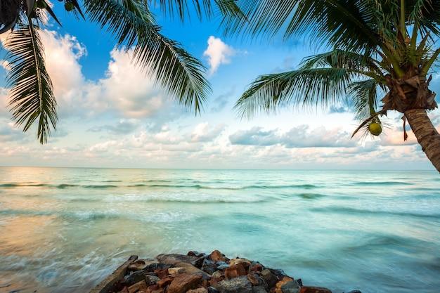 Beau lever de soleil tôt le matin sur le cocotier avec la mer Photo Premium