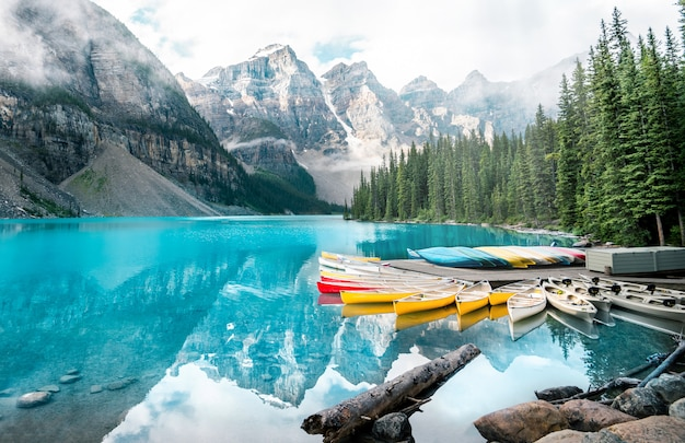 Beau, moraine, lac, paysage, dans, parc national banff, alberta, canada Photo Premium