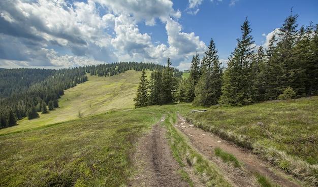 Beau Paysage Sur Les Collines De Pohorje En Slovénie Photo gratuit