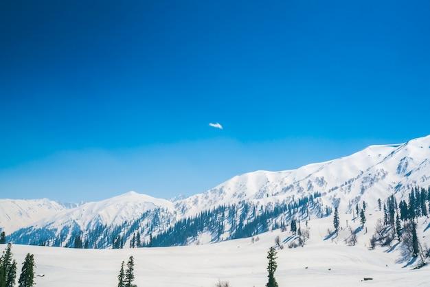 Beau paysage couvert de neige l'état du cachemire, en inde. Photo gratuit