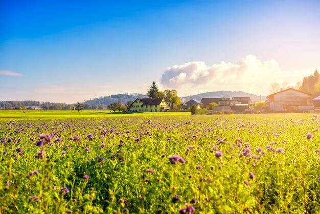 Beau paysage de ferme et ciel bleu Photo Premium