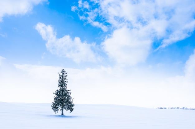 Beau Paysage De Nature En Plein Air Avec Arbre Seul Dans La Saison De La Neige En Hiver Photo gratuit