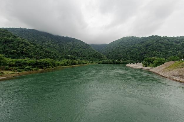 Beau paysage de la rivière verte entourée d'une banque d'arbres Photo Premium