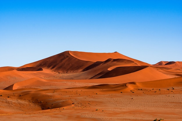Beau Paysage De Sable Orange Dune Sable Orange Au Désert Du Namib Dans Le Parc National De Namib-naukluft Sossusvlei En Namibie. Photo gratuit