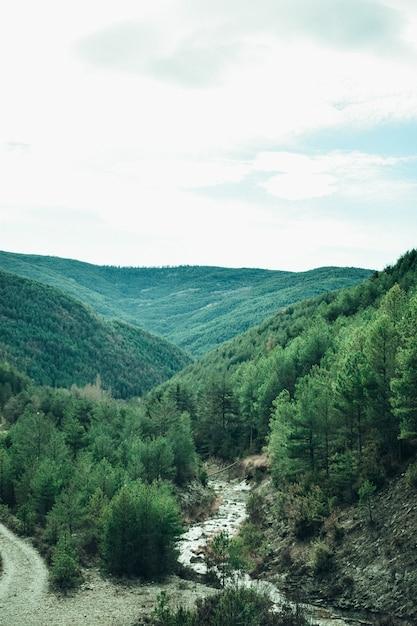 Beau Paysage De Vallée Avec Une Rivière Photo gratuit
