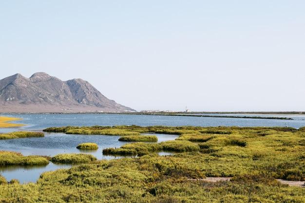 Beau Plan Panoramique D'un Lac Entouré D'herbe Verte Et De Hautes Montagnes Sous Le Ciel Bleu Photo gratuit