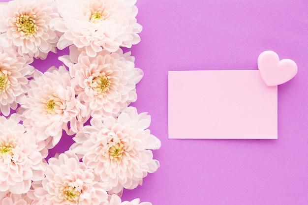 Beaucoup De Fleurs De Chrysanthème Rose Avec Un Centre Jaune Et Un Autocollant Rectangulaire Avec Un Clip Coeur Photo Premium