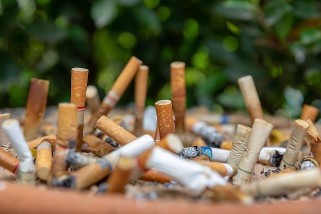 Beaucoup de mégots dans la zone fumeur. Photo Premium