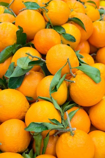 Beaucoup d'oranges fraîches et mûres Photo Premium