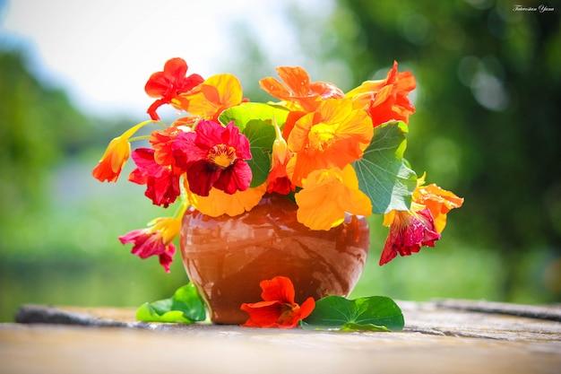Beaucoup de photos de fleurs. collage. mise au point sélective Photo Premium
