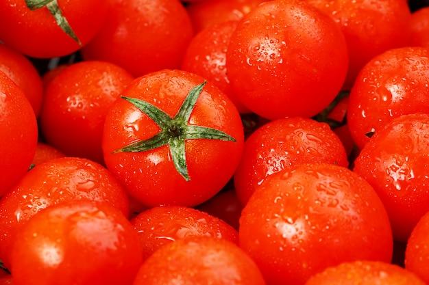 Beaucoup de tomates mûres fraîches avec des gouttes de rosée. Photo Premium