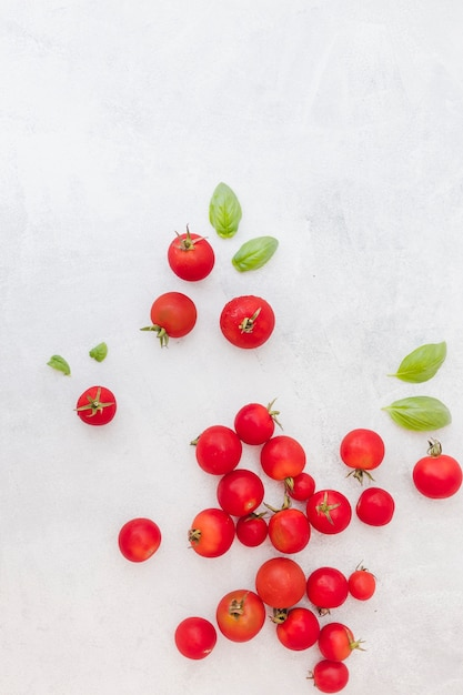 Beaucoup de tomates rouges avec des feuilles de basilic sur fond texturé Photo gratuit