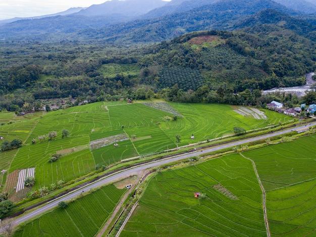 La beauté naturelle de bengkulu à partir de photos aériennes de l'époque en forêt Photo Premium