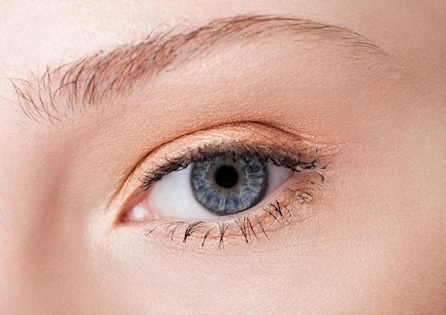 Beauté des yeux gros plan avec maquillage créatif avec des couleurs roses naturelles Photo Premium