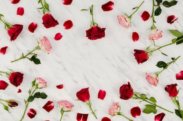 Bel Assortiment De Roses Vue De Dessus Photo gratuit