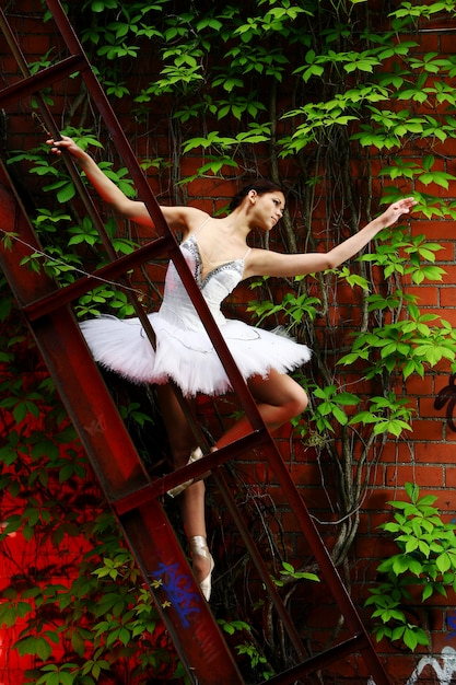 Belle ballerine danse ballet Photo gratuit