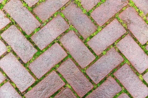 Belle chaussée pavée de maçonnerie avec de l'herbe germée dans les joints. fermer. . fond Photo Premium