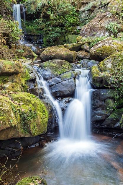 Belle chute d'eau avec fond de nature. Photo Premium