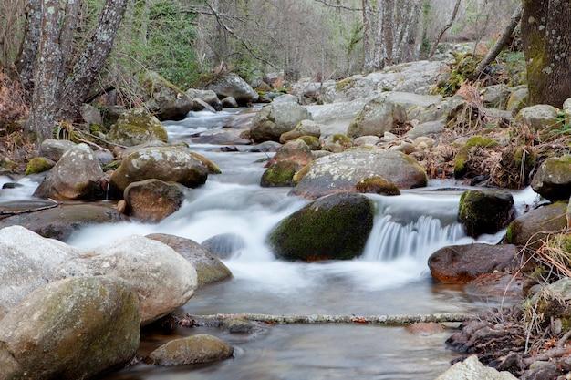 Belle chute d'eau Photo Premium