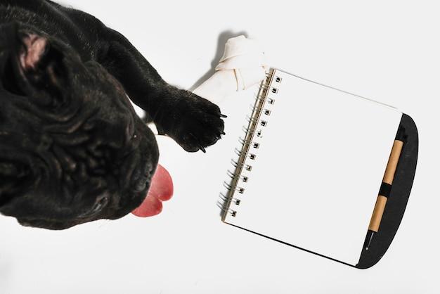 Belle composition de bulldog avec cahier Photo gratuit