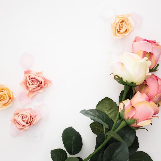 Belle Composition Faite De Roses Sur Fond Blanc Photo gratuit