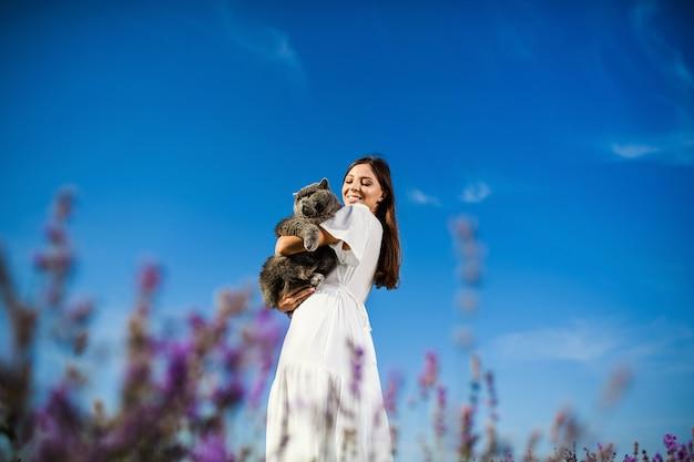 Belle Femme Avec Un Chat Britannique Dans Le Champ De Lavande Au Coucher Du Soleil. Ambiance Estivale Fantastique. Photo Premium