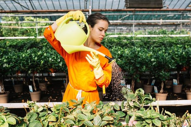Belle femme prenant soin des plantes en serre Photo gratuit