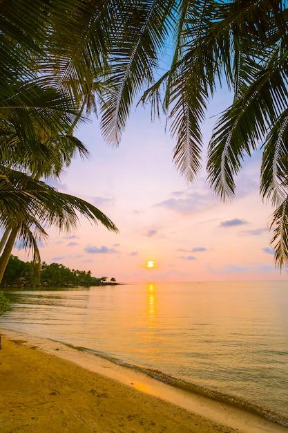 Belle île paradisiaque avec plage et mer autour du cocotier Photo gratuit